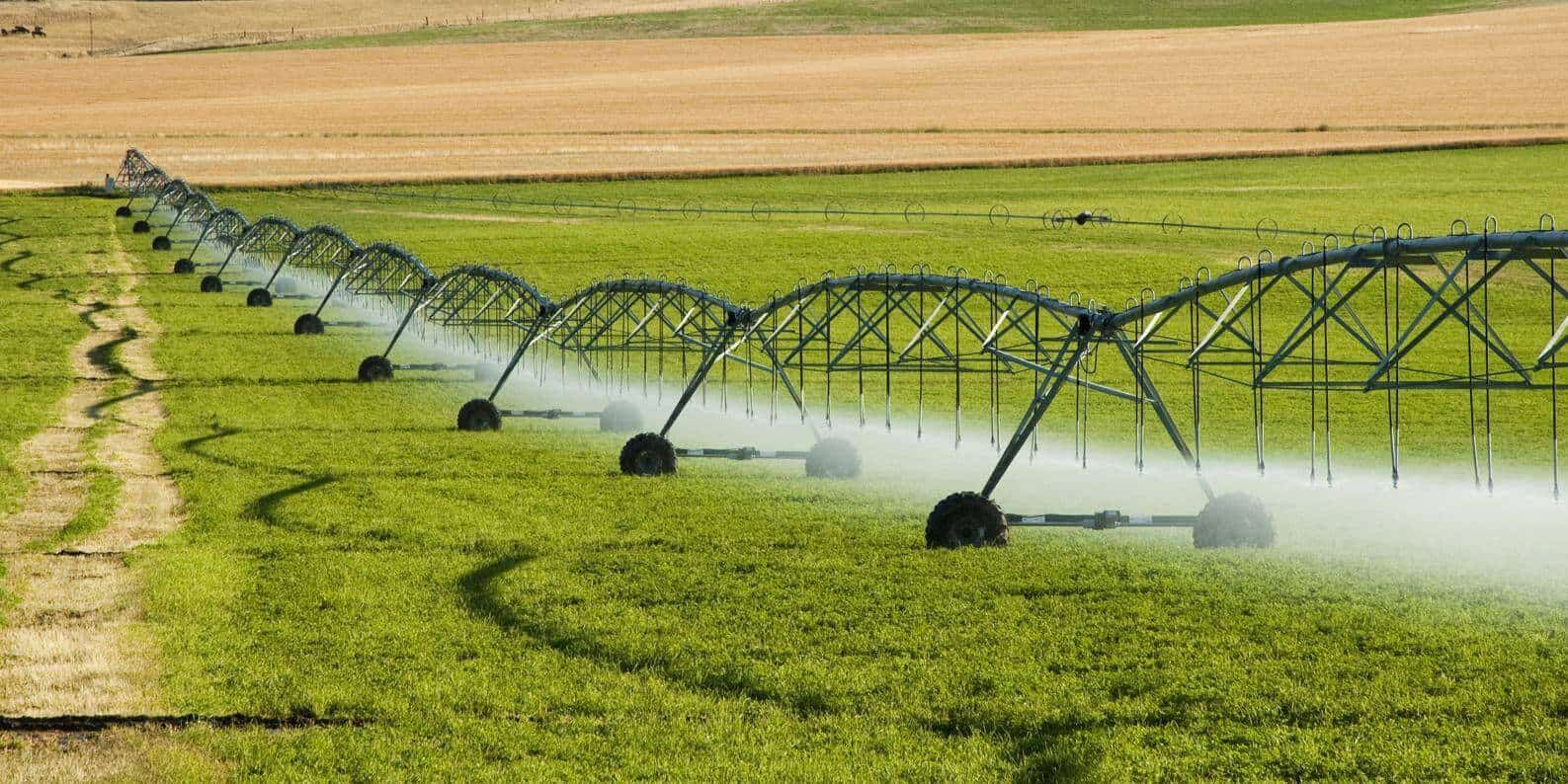 irrigation rubber